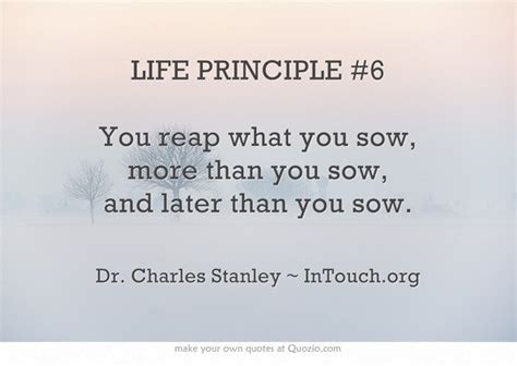 As you sow so shall you reap school essays college jpg 650x461